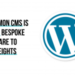 A Common CMS Is Taking Bespoke Software to New Heights